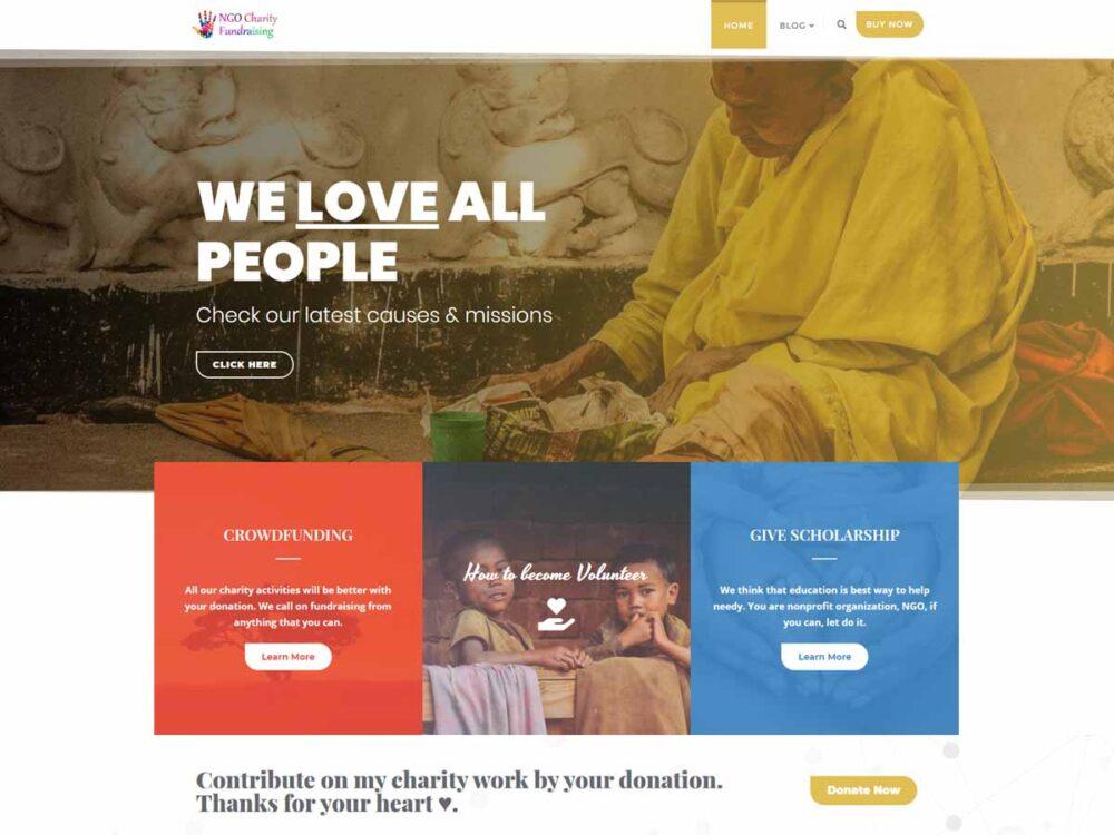 NGO Charity Fundraising Lite